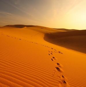 Maroc : la culture du désert à l'honneur
