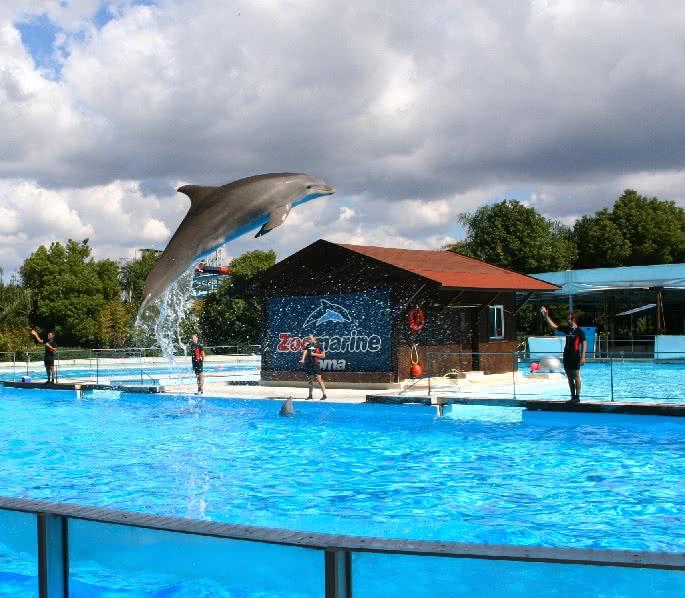 Automne-hiver : Les parcs d'attractions sont encore ouverts