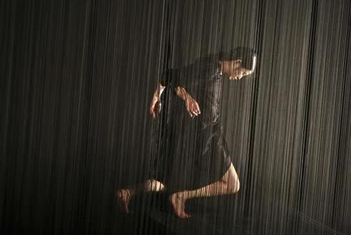 Un spectacle remarquable : Plexus, d'Aurélien Bory et Kaori Ito