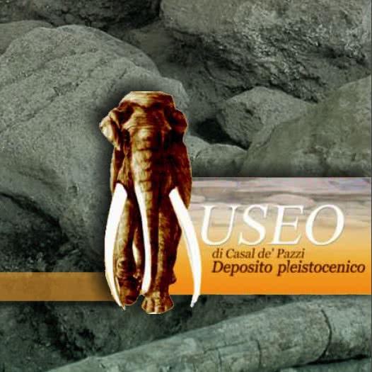 MuseocasldePazzi