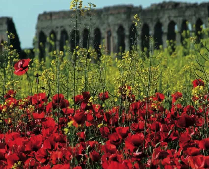 Parc de l'Appia Antica : Activités du printemps et de l'été