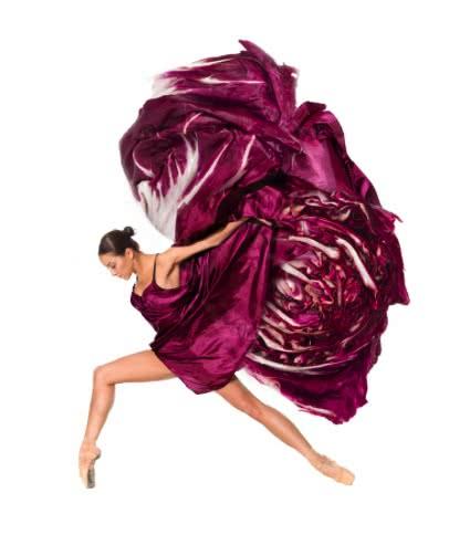 roma-dance-show