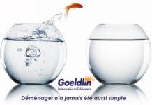 Goeldlin demenageur rome